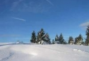 winterstim_18_97785