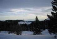 winterstim_18_97858
